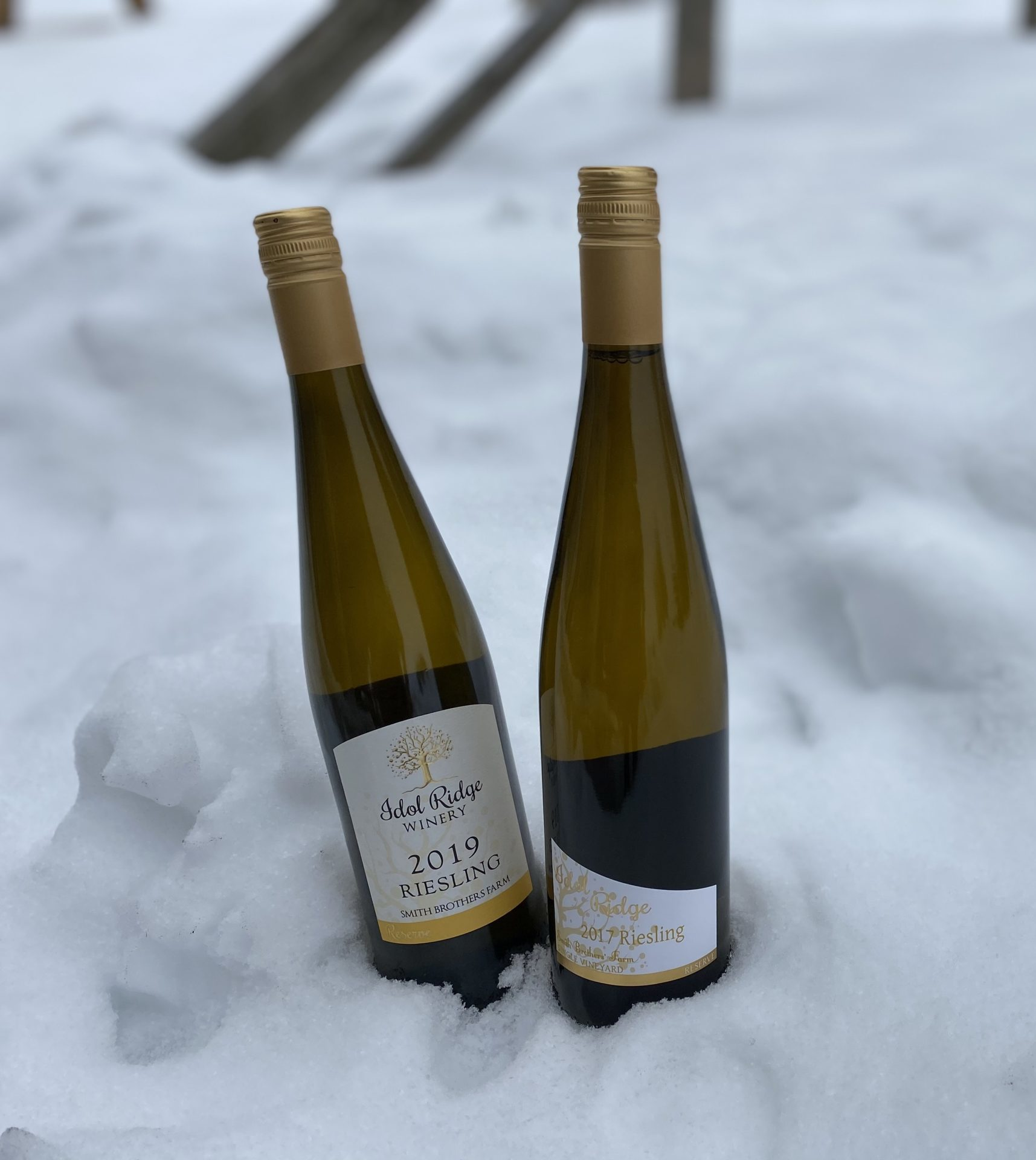 Two wines standing up in the snow